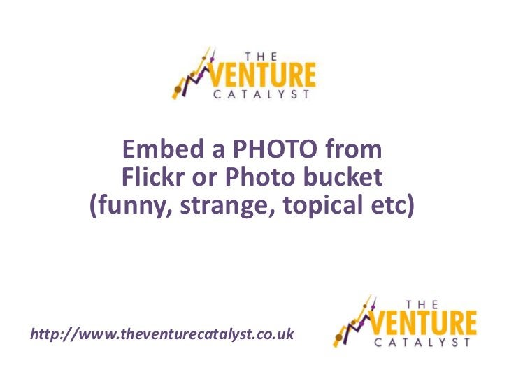 Embed a PHOTO from          Flickr or Photo bucket       (funny, strange, topical etc)http://www.theventurecatalyst.co.uk