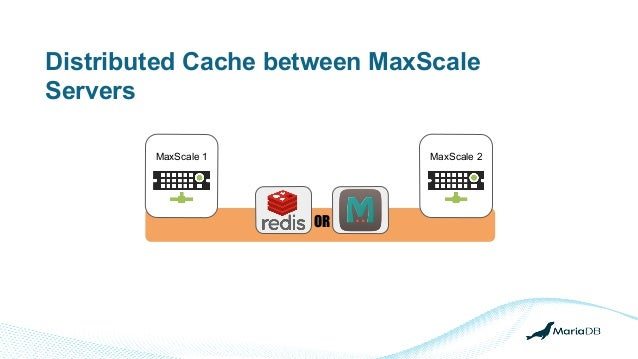 Distributed Cache between MaxScale Servers MaxScale 1 MaxScale 2 OR