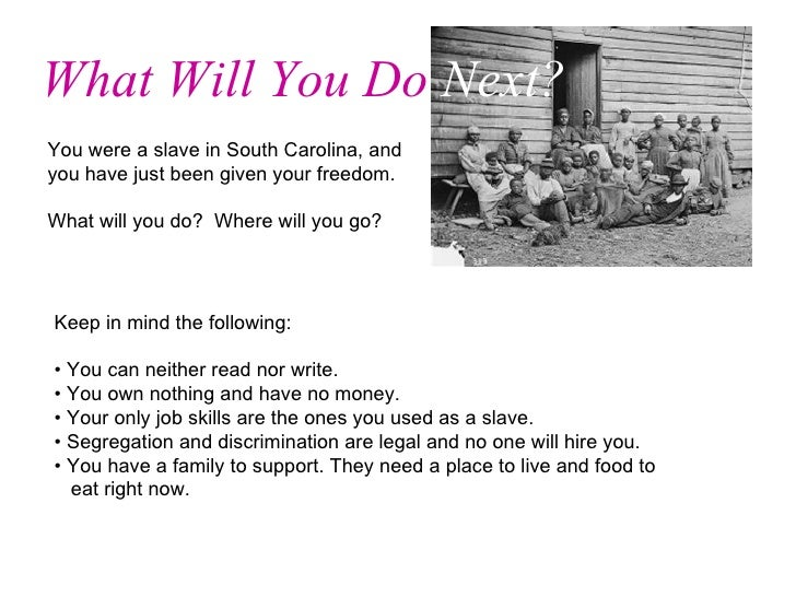 You were a slave in South Carolina, and you have just been given your freedom.  What will you do?  Where will you go?  Wha...