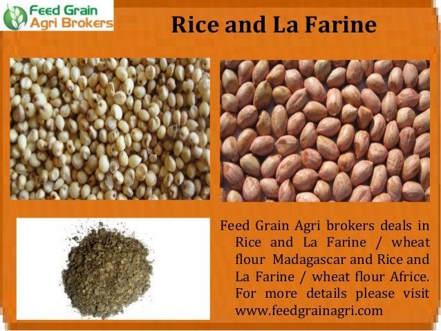 Wheat Flour International Broker