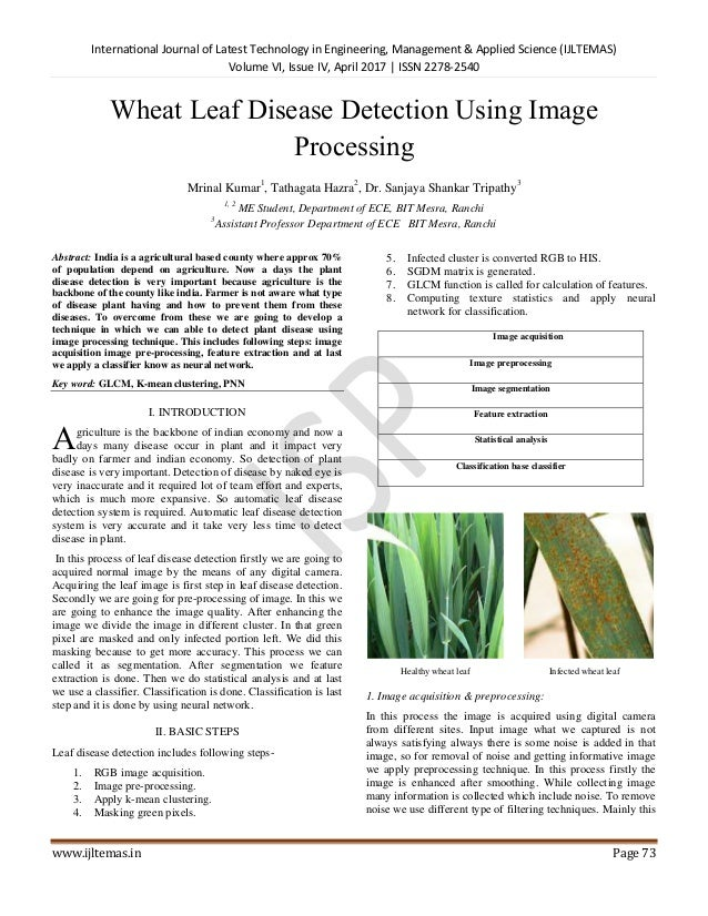 Leaf Disease Detection Api