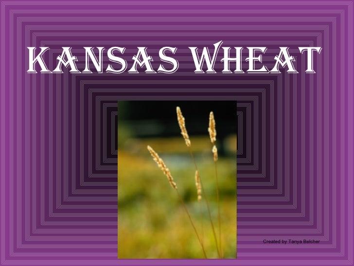 Kansas Wheat Created by Tanya Belcher