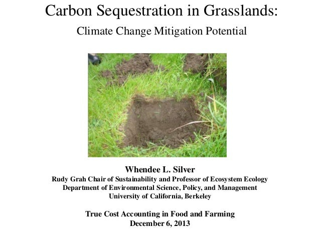 Carbon Sequestration in Grasslands: Climate Change Mitigation Potential  Whendee L. Silver Rudy Grah Chair of Sustainabili...