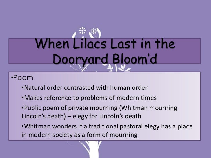 when lilacs las in the dooryard When lilacs last in the dooryard bloom'd analysis essayslincoln's assassination in the spring of 1865 had a violent impact on the lives of the nations people, and was a deep and personal tragedy for american poet walt whitman.
