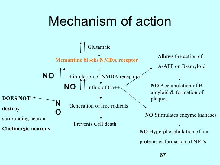 memantine mechanism of action pdf