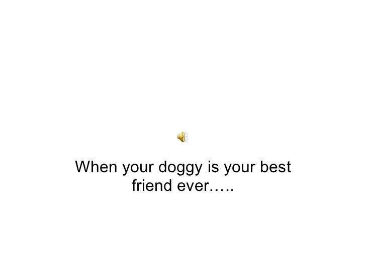 When your doggy ....