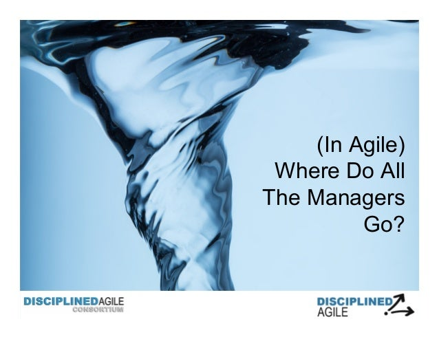 (In Agile) Where Do All The Managers Go?