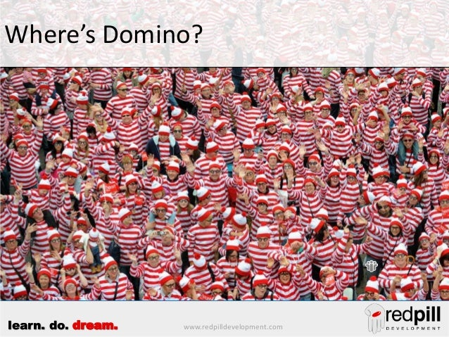 www.redpilldevelopment.comlearn. do. dream. Where's Domino?