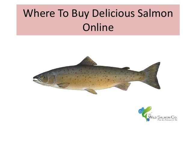 Where To Buy Delicious Salmon Online