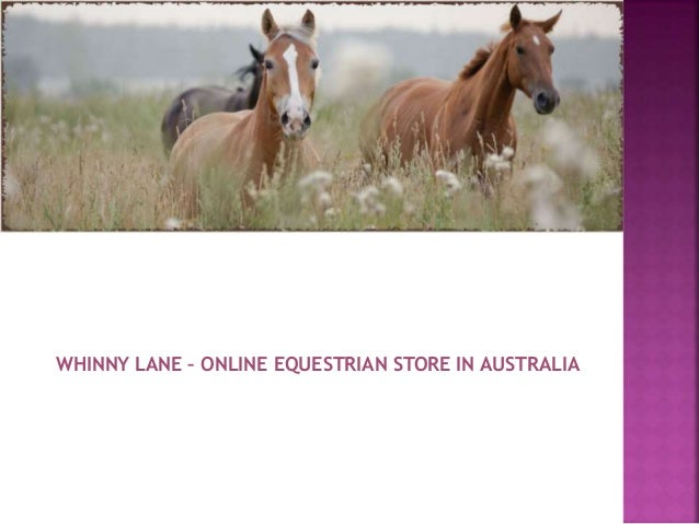 Whinny Lane Online Equestrian Store