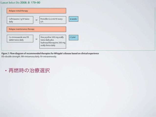 • 再燃時の治療選択 Lancet Infect Dis 2008; 8: 179–90 http://infection.thelancet.com Vol 8 March 2008 Relapse initial therapy Relap...