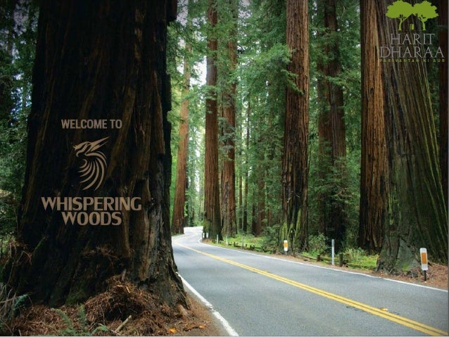 """Whispering Woods "" is coming up on Pirumadara, Ramnagar (Nanital- Uttaranchal ) and is just 1 kms away from NH-121 (Kashi..."