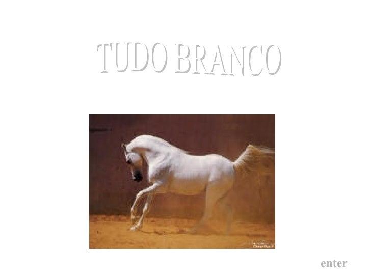 TUDO BRANCO enter