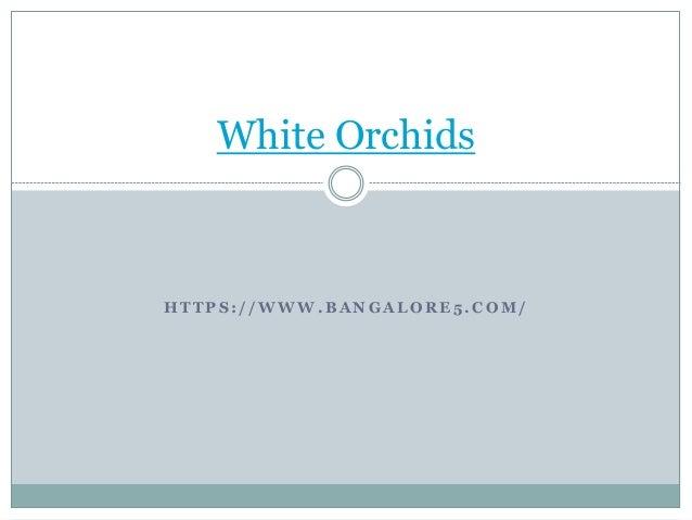 H T T P S : / / W W W . B A N G A L O R E 5 . C O M / White Orchids