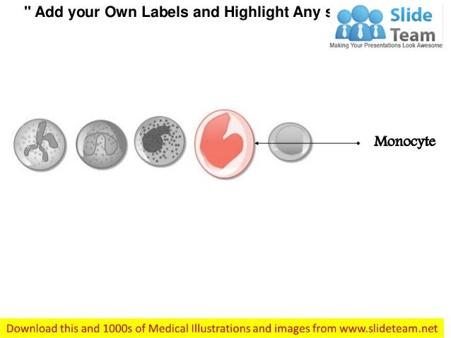 """"""" Add your Own Labels and Highlight Any section"""" Monocyte"""