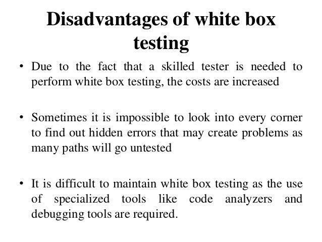 white and black box testing pdf