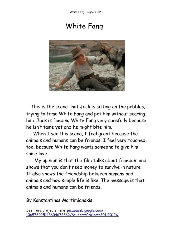White Fang Projects 2012                   White Fang  This is the scene that Jack is sitting on the pebbles,trying to tam...