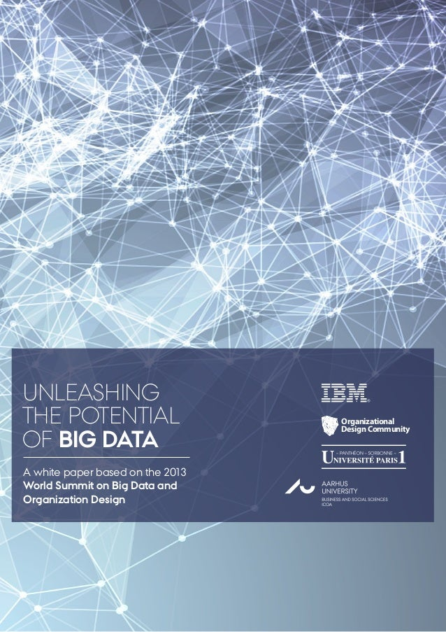 UNLEASHING THE POTENTIAL OF BIG DATA A white paper based on the 2013 World Summit on Big Data and Organization Design  Org...