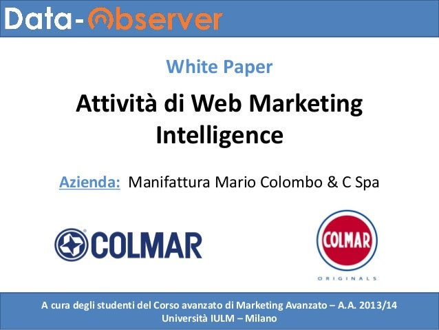Attività di Web Marketing Intelligence: White Paper