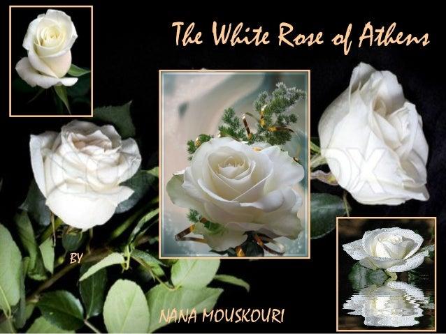 The White Rose of AthensBYNANA MOUSKOURI