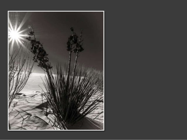 White Sands in Black and White  - Images by Marjorie Kaufman Slide 2