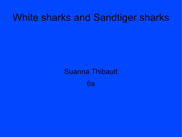 White sharks and Sandtiger sharks Suanna Thibault 6a
