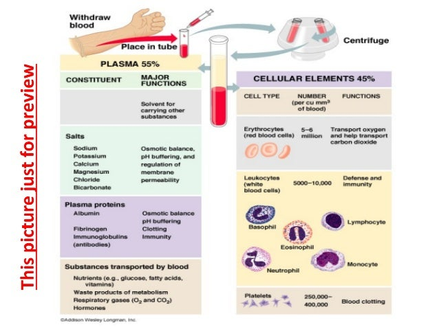 Whole Blood Serum Amp Plasma Collections