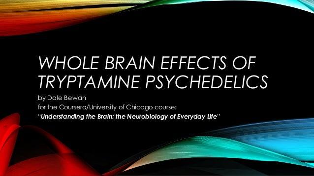 "WHOLE BRAIN EFFECTS OF TRYPTAMINE PSYCHEDELICS by Dale Bewan for the Coursera/University of Chicago course: ""Understanding..."