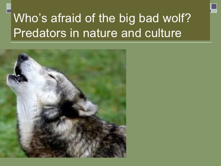 Who's afraid of the big bad wolf? Predators in nature and culture