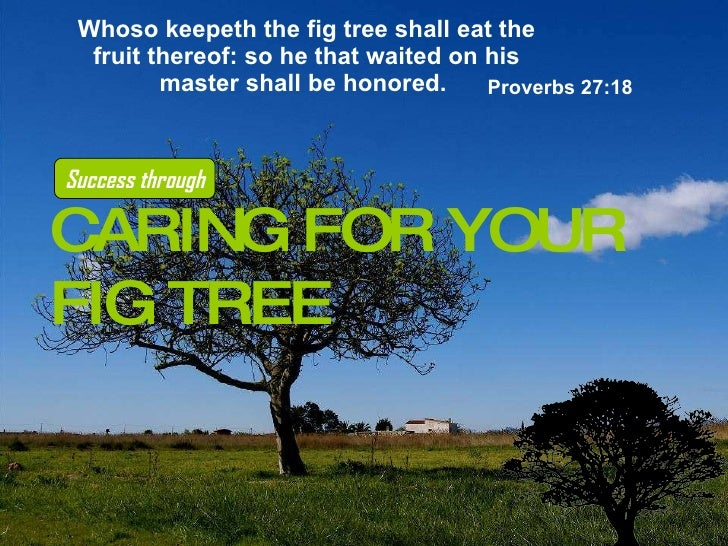 Whoso keepeth the fig tree shall eat the fruit thereof: so he that waited on his master shall be honored.   Proverbs 27:18...