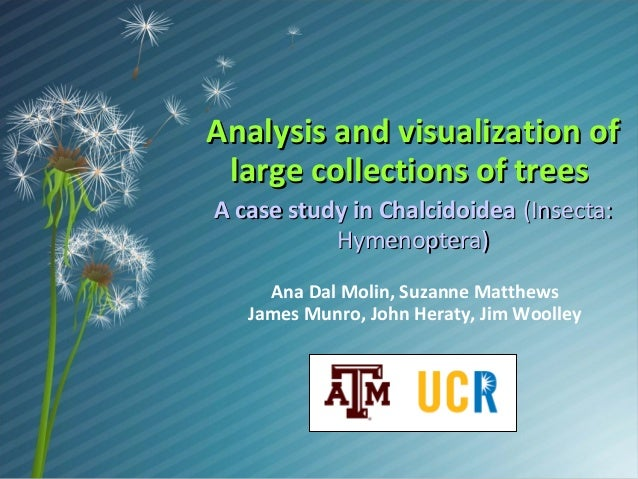 Analysis and visualization of large collections of trees A case study in Chalcidoidea (Insecta: Hymenoptera) Ana Dal Molin...