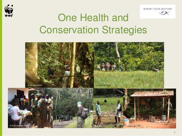 One Health and Conservation Strategies 1 © Metzger/TCP © Metzger/TCP © Dehling/WWF© De Nys/WWF © Grützmacher/WWF © WWF
