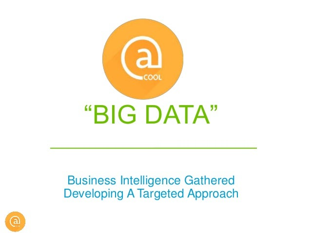 """""""BIG DATA"""" Business Intelligence Gathered Developing A Targeted Approach"""