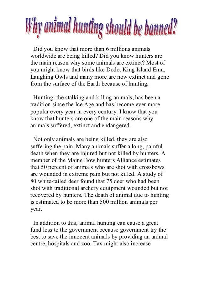 essay on save animals and birds