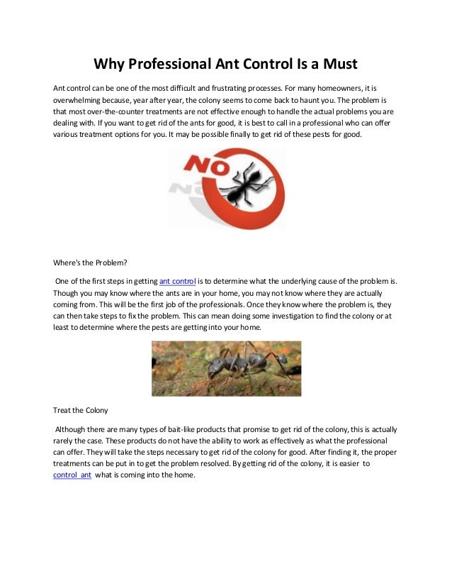 Why Professional Ant Control Is a MustAnt control can be one of the most difficult and frustrating processes. For many hom...
