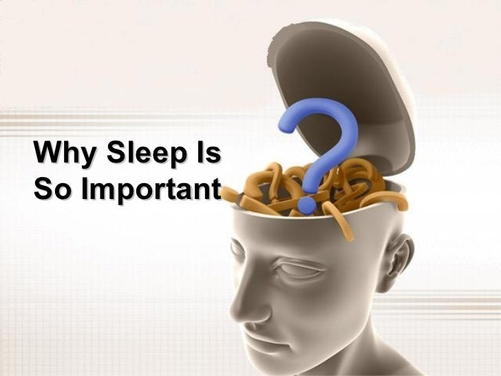 Why Sleep IsSo Important