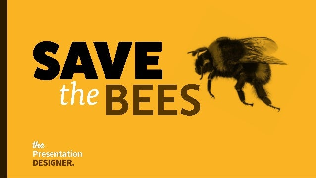 Why the World Needs Bees Slide 1
