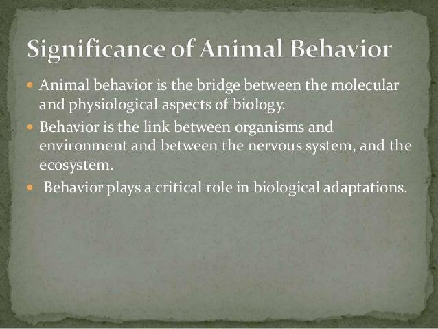 U21607 Key Ideas in Human and Animal Behaviour - Quizlet