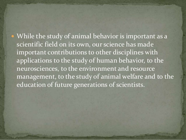 Research ideas: Animal behavior (Intelligence ...