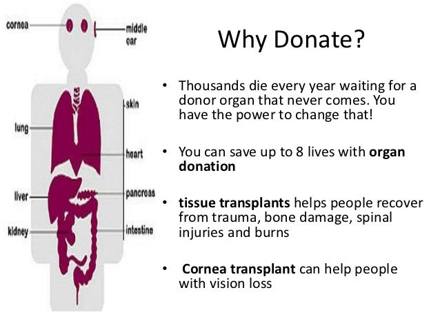 why becoming an organ donor