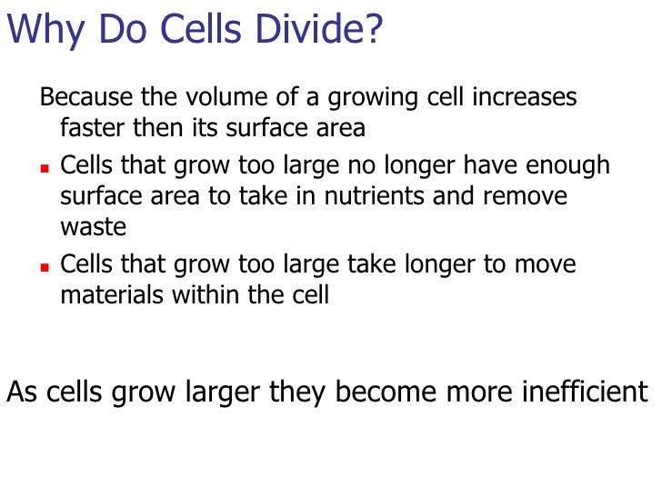 why do cells divide