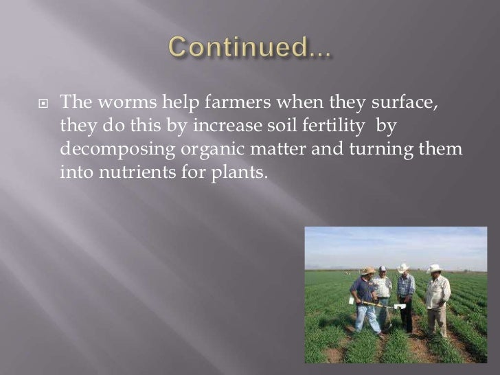 Why do earthworms come out of the soil for 5 facts about soil