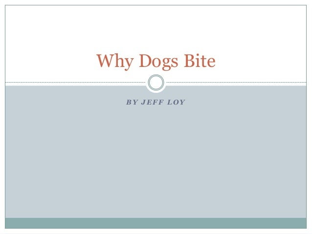 Why Dogs Bite BY JEFF LOY
