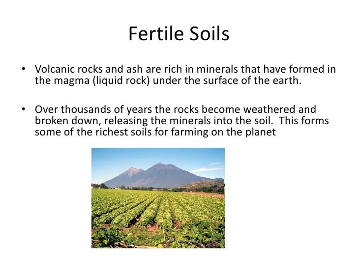 fertile soil volcano - photo #34