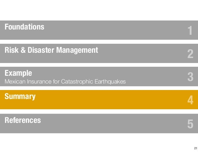 management of mitigation after a calamity essay The role of social networks in emergency management: a research agenda including the position papers prepared by the which can guide disaster mitigation.