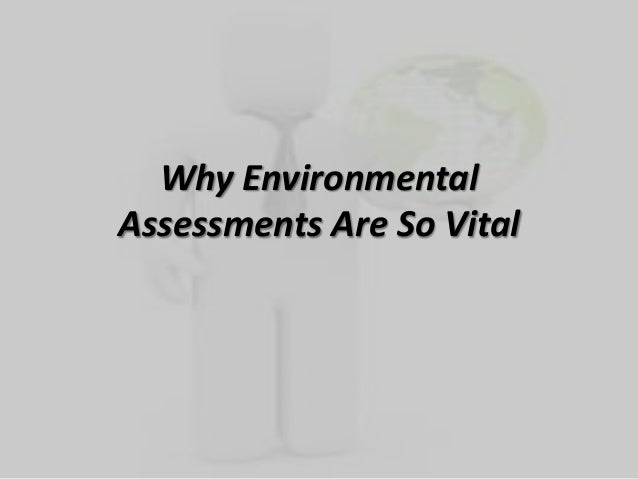 Why EnvironmentalAssessments Are So Vital