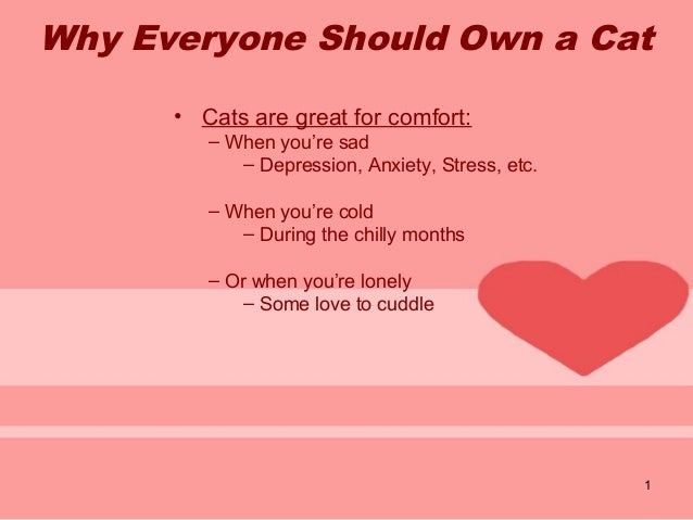 1 Why Everyone Should Own a Cat • Cats are great for comfort: – When you're sad – Depression, Anxiety, Stress, etc. – When...