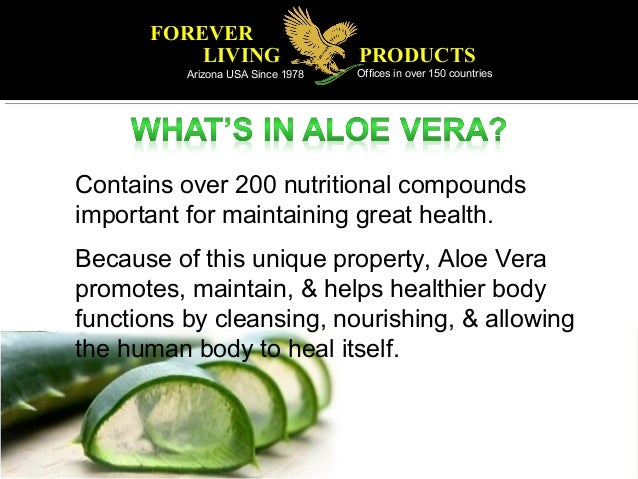 Why Our Aloe Vera Is The Best Aloe Vera In The World