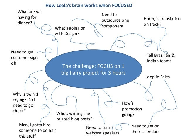 How Leela's brain works when FOCUSED   What are we                                              Need to   having for      ...