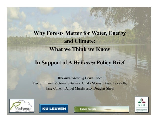 Why Forests Matter for Water, Energy and Climate: What we Think we Know In Support of A WeForest Policy Brief 	 WeForest S...